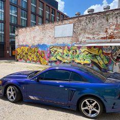 Saleen Mustang, Mustang Cobra, New Edge Mustang, Car Makes, Mustangs, Muscle Cars, Convertible, Paint Colors, Ford