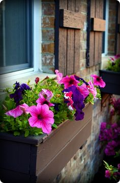 window boxes...I want to do this under the window on my shed.