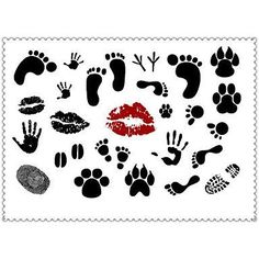 HJLWST 5PCS Fashion Cartoons Body Art Waterproof Temporary Tattoos Sexy Tattoo Stickers (Size: 3.74'' by 5.71''). Tattoo sticker use green ink and glue, is harmless to human body. Paste the successful design with waterproof and sweat-proof function, will not fall off in the shower, but do not rinse with hot water for too long, should not be rubbed with. Different parts of the pattern paste, duration of different patterned after 3-5 days began to fall under normal usage conditions, feet…