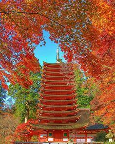 Tanzan-Jinja Shrine, Nara, Japan