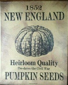 Primitive Colonial Fall and Autumn Decorating ~ Handcrafted New England Pumpkin Seeds Print ~ Available for sale Vintage Labels, Vintage Ads, Vintage Signs, Vintage Ephemera, Primitive Labels, Primitive Fall, Primitive Crafts, Country Interior Design, Autumn Decorating