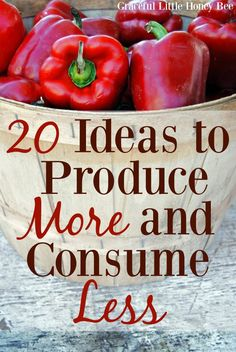 Check out these 20 Ideas to Produce More and Consume Less on gracefullittlehoneybee.com Ways To Save Money, Money Tips, Money Saving Tips, How To Make Money, Living On A Budget, Frugal Living Tips, Frugal Tips, Frugal Family, Living Within Your Means