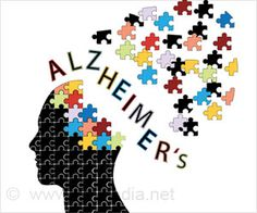 Can Bioenergetic Issues Contribute to the Alzheimer's Disease?