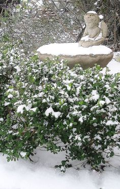 """March 