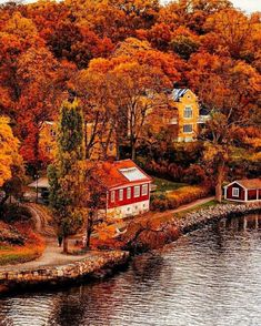 Celebrate the beauty of Fall with stunning images of the beauty of Fall. From stunning fall scenery, to fall tablescapes and home decorating ideas. Autumn Scenes, Autumn Cozy, Autumn Fall, Winter, Autumn Aesthetic, All Nature, Autumn Nature, Fall Pictures, Nature Pictures
