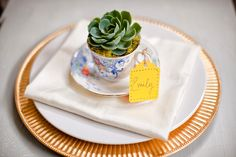 Duuuuuuuude. Thrift store tea cups + succulents.