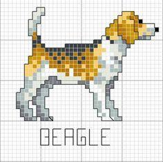 Blog de celeste :Minhas  Artes  Diversas, Cão [Beagle]