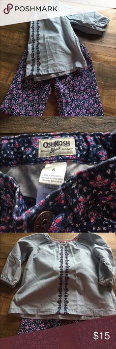 Little girls outfit! NWOT Never worn. Sweet spring outfit. Osh Kosh Other
