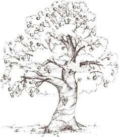 Tree sketch • Apple tree. It remembers me of Winnie the Pooh