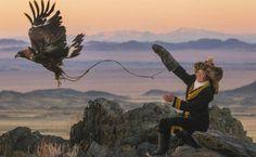 Fotógrafo registra única menina a caçar com águia-dourada na Mongólia; veja fotos - 16/04/2014 - BBC - Folha de S.Paulo