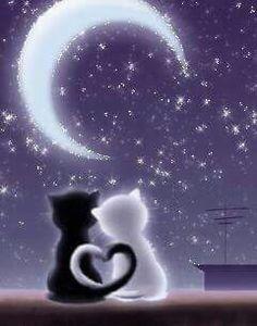 El amor de la noche.