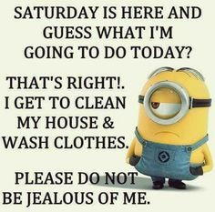 funny animals For all Minions fans this is your lucky day, we have collected some latest fresh insanely hilarious Collection of Minions memes and Funny picturess Funny Saturday Memes, Funny Mom Memes, Mom Humor, Funny Humor, Minion Jokes, Minions Quotes, Funny Minion, Minion Talk, Minions Cartoon