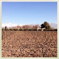 Invierno en #BodegaLagarde #Mendoza