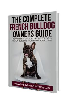 The complete French bulldog puppy guide for new Frenchie parents - PART 1 - Preparation - Happy French Bulldog Cute French Bulldog, French Bulldog Puppies, French Bulldogs, Teach Yourself French, Bulldog Breeds, Puppy Food, Dog Food, Dog Barking
