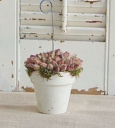 Photo Holder Dried Roses Cottage