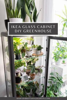 Inside Plants, Room With Plants, House Plants Decor, Plant Decor, Indoor Greenhouse, Indoor Garden, Indoor Plants, Home And Garden, Fabrikor Ikea