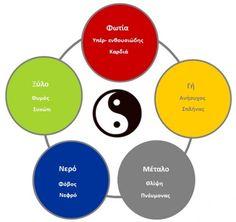 Η παραδοσιακή κινέζικη ιατρική | συμπτωματολογια | Health path Chart, Health, Health Care, Salud