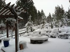 Big snow day in BEND, OREGON Bend, Real Estate Marketing, Pacific Northwest, North West, Snow, Big, Winter, Outdoor, Beautiful