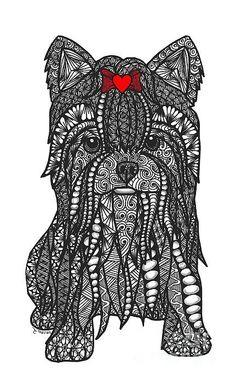 Feisty - Yorkshire Terrier Print By Dianne Ferrer