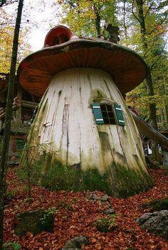 Casa de los #gnomos en el bosque. Un refugio para cualquiera :-) #wemeantravel
