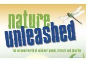 Grades 3-5 Instructional Unit | Missouri Department of Conservation