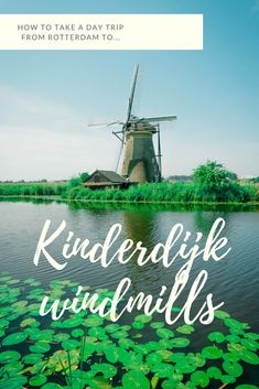 Take the perfect day trip from ultra-modern Rotterdam to visit the historic and beautiful Kinderdijk windmills. Here is everything you need to know about how to get there, what there is to do and how to get the most out of your visit! #netherlands #holland #citybreak #daytrip #europe #solotravel