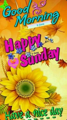 Good Sunday Morning, Happy Sunday, Good Day, Good Evening Greetings, Fall, Quotes, Buen Dia, Autumn, Quotations