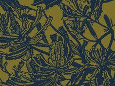 Banksia (Military & Khaki) | Jude Taylor | Wildflower Art, Design & Fabric | Swan Valley, Perth, WESTERN AUSTRALIA