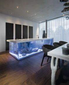 meuble aquarium, un intérieur à lignes épurées