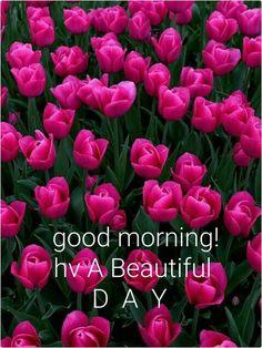 Good Morning from Muhammad Tariq with this spectacular rainy morning!