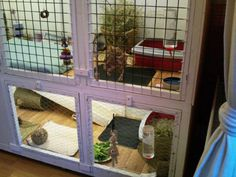 Indoor Rabbit House Made From An Old Cupboard Dresser