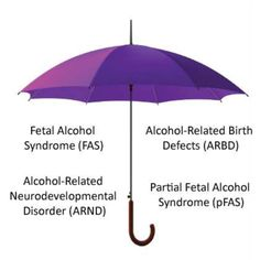 Regular readers of this blog will know how long it took us to get a diagnosis of Alcohol Related Neurodevelopmental Disorder (ARND), whic...