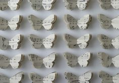 Beloved Underwing by Tracey Bush. Handcut butterflies from romantic music scores pinned out in an entomology box.