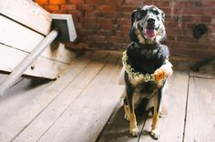 Photography: Fidelio | Event Planning: – Daisies and Pearls | Venue: Portland Company Complex| | Lighting: The Event Light Pros
