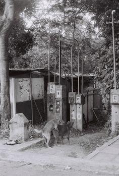 Posadas, Misiones / Argentina 35mm Film, Buenos Aires Argentina