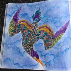 Facebook Photophpfbid Curious CreaturesArt TherapyAdult ColoringColouringColoring BooksPhpDoodlesTropical
