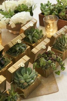 Succulent is a type of plants that doesn't need a lot of treatment. They can grow anywhere with minimum water, including the wood succulent planter. Here are 20 ideas of cute and vintage succulent planter. Wedding Guest Table, Wedding Favors For Guests, Wedding Place Cards, Wedding Gifts, Wedding Card, Wedding Ideas, Succulent Wedding Favors, Succulent Gifts, Wedding Flowers