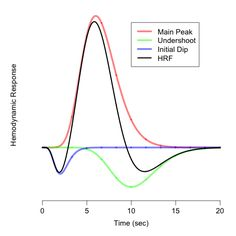 Invariances: Bayesian Modeling to Improve The Spatial and Temporal Resolution in fMRI: Part 1.