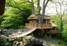 Blueforest has a variety of different treehouses on offer.