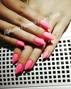 Los Flamingos indigo