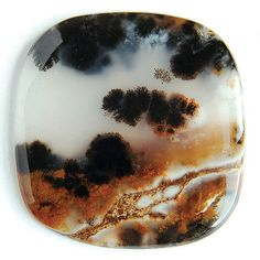 Dendritic Moss Agate cabochon with landscape Crystals And Gemstones, Stones And Crystals, Dendritic Agate, Jasper Stone, Moss Agate, Wooden Rings, Agates, Gem Stones, Gems And Minerals