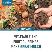 Use clippings from the kitchen for mulch