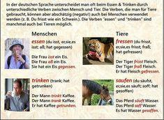 ESSEN I TRINKEN – Deutsch-Viel Spass