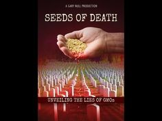 """I'm repinning this again, because this information can not be repeated enough!!! - rueth - EDUCATE YOURSELF, share with your family and friends, and help spread GMO awareness! The future of our planet depends on it!  """"This award-winning documentary, Seeds of Death, exposes the lies about GMOs and pulls back the curtains to witness our planet's future if Big Agriculture's new green revolution becomes our dominant food supply."""""""
