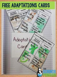Free Adaptations Cards Printable