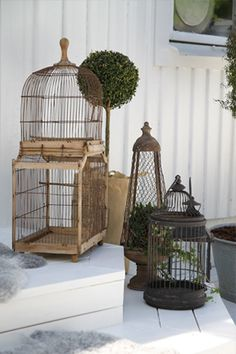 Interior // bird cages as decoration - PS by Dila