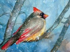 Mollie Jones watercolor.  Did you kow that maile cardinal will feed the female and babies?!