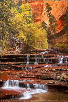 Fall for Autumn: Arch Angel Falls, Zion National Park, Utah, United States. Oh The Places You'll Go, Places To Travel, Places To Visit, Parc National, Zion National Park, Arches National Parks, Parque Natural, Les Cascades, Photos Voyages