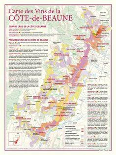 Carte des vins de La Côte-de-Beaune: Ce document cartographique de format 30 x 40 centimètres, présente à une échelle de 7 centimètres pour…