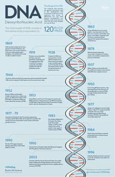 DNA Day inforgraphic More